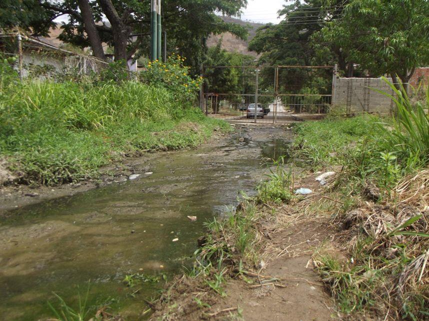 Río de Cloacas en la Calle 5 de la Urbanicación Corosito