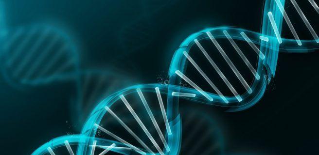 Crean lector de ADN portátil que puede utilizarse en teléfonos inteligentes