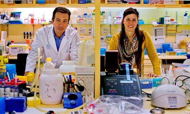 Científicos en la lucha contra el cáncer
