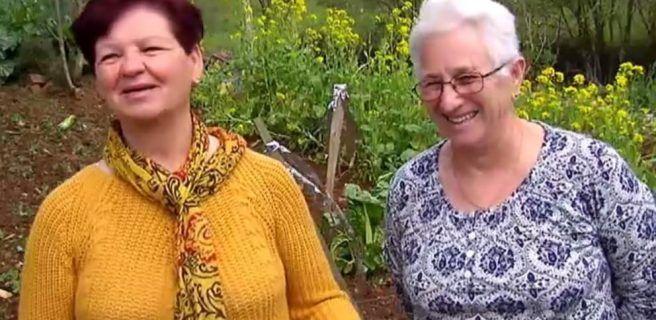 Dos ancianas al encontraron marihuana en su huerto