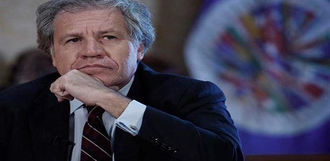 """Bolivia acusa a Almagro de actuar al margen de """"institucionalidad"""" de la OEA"""