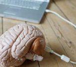 Neuralink, el ambicioso proyecto para conectar nuestros cerebros a las computadoras