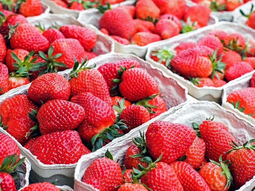 Las fresas previenen múltiples enfermedades