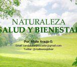 Maite Araujo Olivares: El Ozono/La Radiación Solar (+ Video)