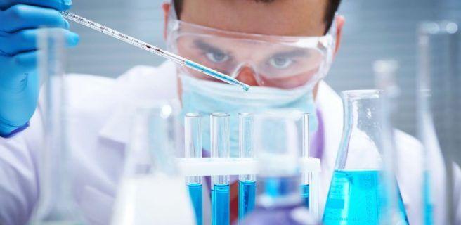 Identifican una proteína clave en la progresión de los tumores