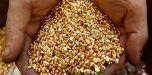 Destinarán extracción de 238 kilos de oro para la inversión social