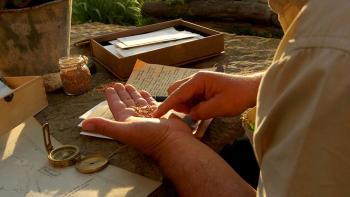 El tritordeum, un alimento más que saludable