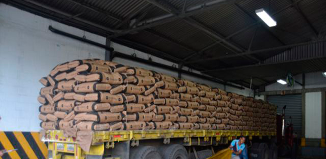 Venezuela importará 60 mil toneladas de trigo mensuales desde Rusia