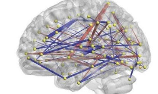 Diseñada una prueba para diagnosticar el autismo ya a los seis meses de edad