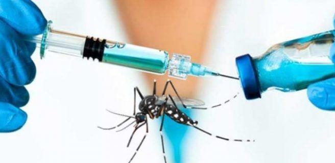 Científicos españoles descubren una molécula como fármaco contra el Zika