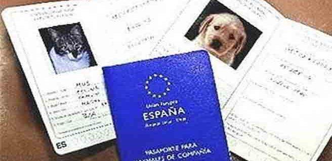 Las mascotas también deben viajar con pasaporte