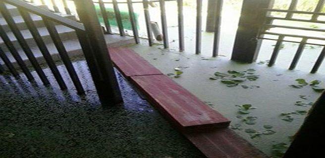 Lluvias disparan alarmas al sur de Maracay