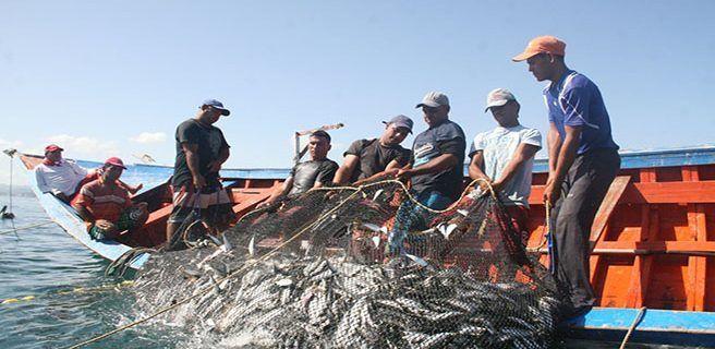 Pesca artesanal produce 117.000 toneladas de pescado al año