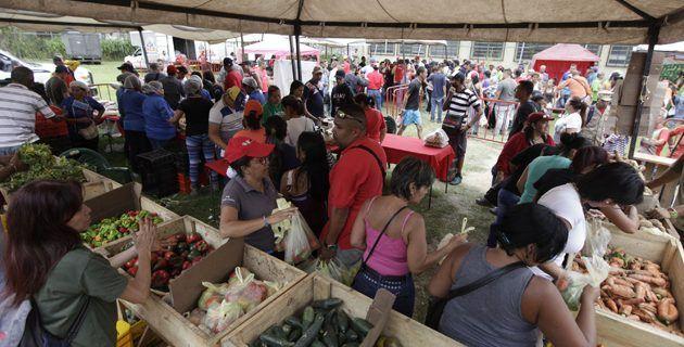 Feria del Campo Soberano en Caracas