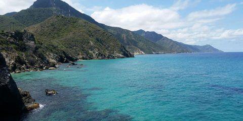 Aragua cuenta con 14 playas aptas para la temporada decembrina
