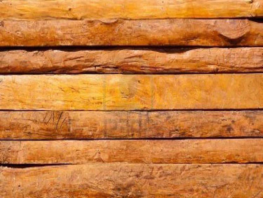 Portuguesa inicia exportación de madera de teca - El Clarín | Diario ...