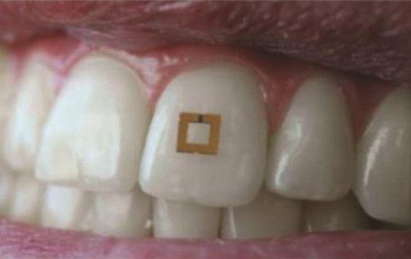 El diente es la pieza importante de la cavidad bucal para masticar el alimento