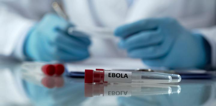 El ébola en el 2015 mató a más de 150 mil personas en África